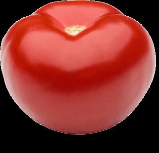 paradajky-volne